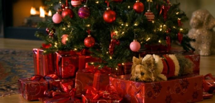 Køb iphone 6 julegave og glæd en fra familien